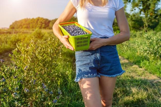 Primo piano di una giovane agricoltrice che tiene in mano un cesto di bacche in fattoria
