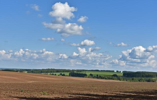 Le nuvole volano sul campo sconfinato