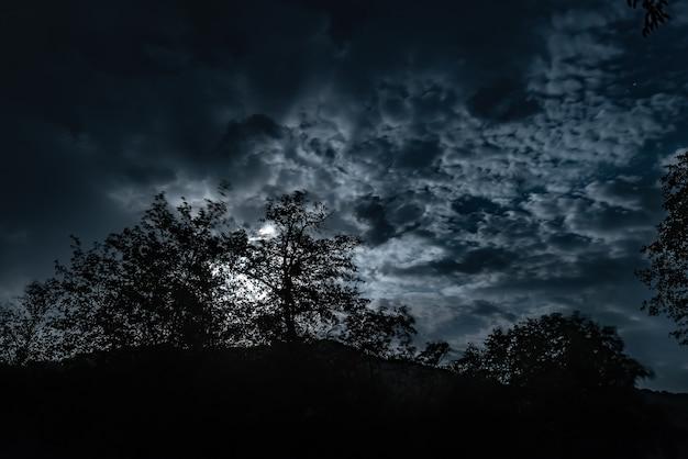 Un cielo notturno nuvoloso con la luce della luna nella foresta misteriosa