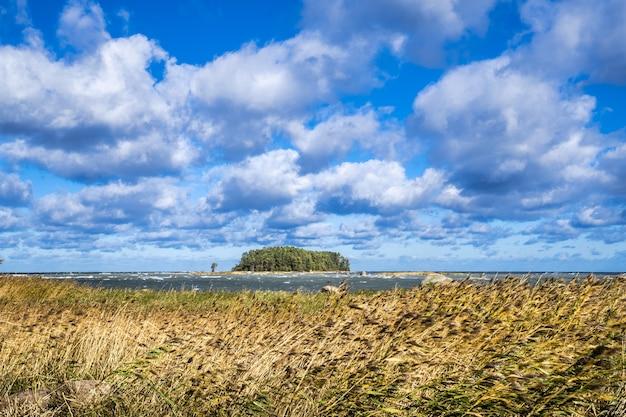 La costa dell'estonia nel parco nazionale lahemaa
