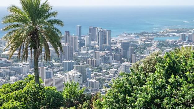 Vista della città costiera con palme in primo piano e acque azzurre sullo sfondo
