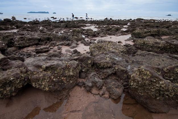 Rocce costiere della thailandia