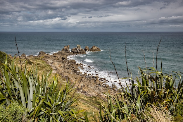 Costa vicino a cape foulwind in nuova zelanda