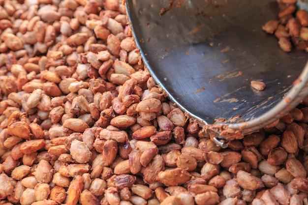 Le fave di cacao vengono fatte fermentare in un serbatoio di fermentazione.