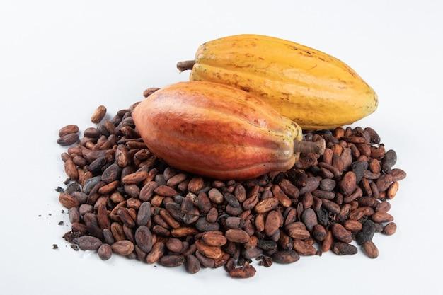 Frutta di cacao su fave di cacao crude su sfondo bianco.
