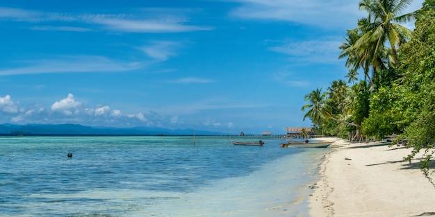 Coconat palm sull'isola di kri, in famiglia e sul molo. raja ampat, indonesia, papua occidentale. largo