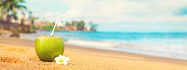 Cocco su un cocktail sulla spiaggia