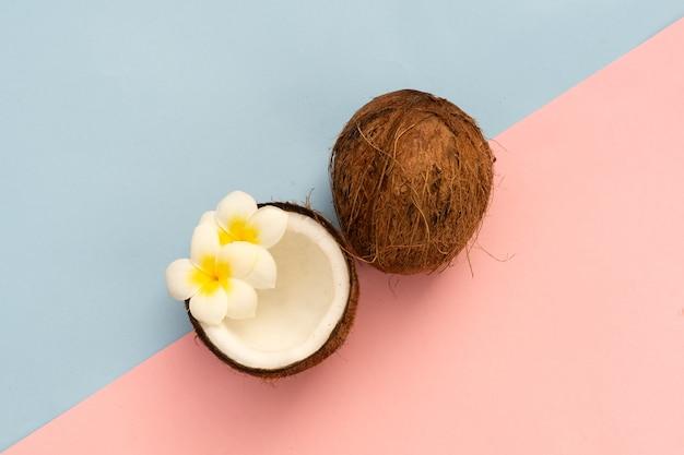 Frutto di cocco isolato su rosa e blu