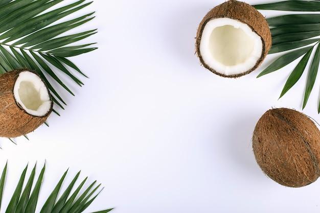 Noce di cocco e foglie di palma, spazio di copia. mood estivo, tropicale, vuoto.