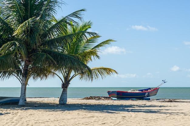 Alberi di cocco e barca sulla spiaggia di lucena, vicino a joao pessoa, paraiba, brasile il 16 maggio 2021.