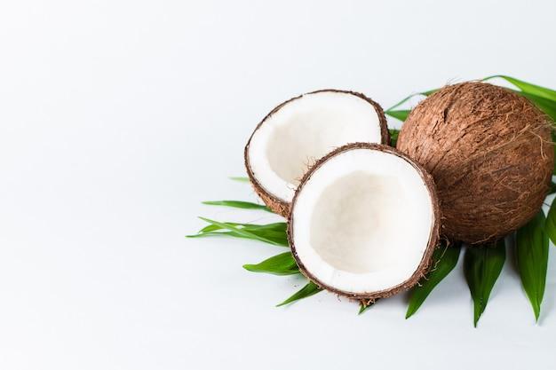Noce di cocco su sfondo bianco