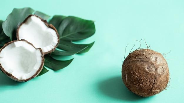 Noce di cocco con foglia tropicale su sfondo blu da vicino.