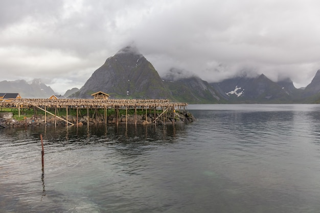 Baccalà essiccazione su tradizionali scaffalature in legno nelle isole lofoten in norvegia, europa