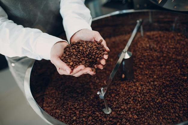 Raffreddamento del caffè nella macchina per la torrefazione durante il processo di torrefazione del caffè giovane lavoratrice barista che mescola e tiene in mano i chicchi di caffè