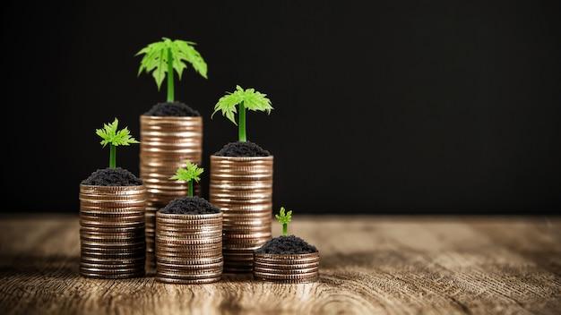 Le monete sono impilate a forma di grafico con alberello di un albero in crescita