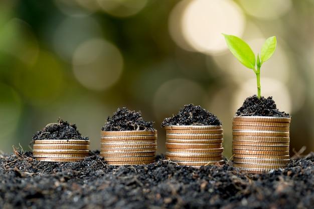 Le monete sono impilate sul terreno e le piantine crescono in cima, il concetto di risparmio di denaro e crescita finanziaria e commerciale.