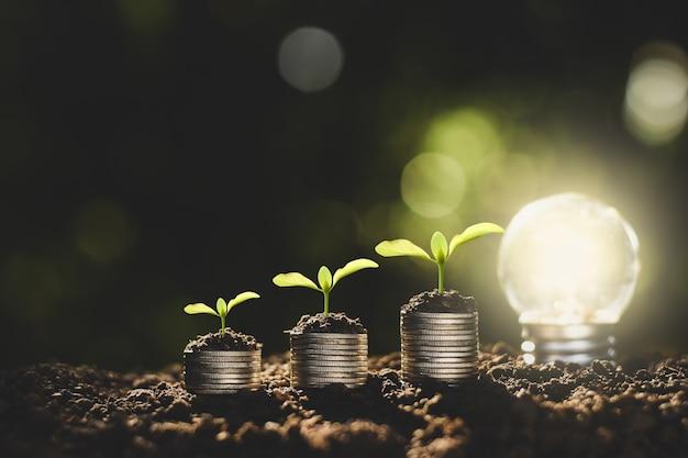 Le monete sono impilate sul terreno e le piantine crescono in cima, il concetto di risparmio di denaro e crescita finanziaria.
