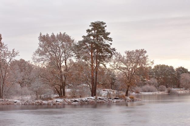 Fredda mattina nevosa sul lago. tardo autunno. alberi in riva al lago in autunno
