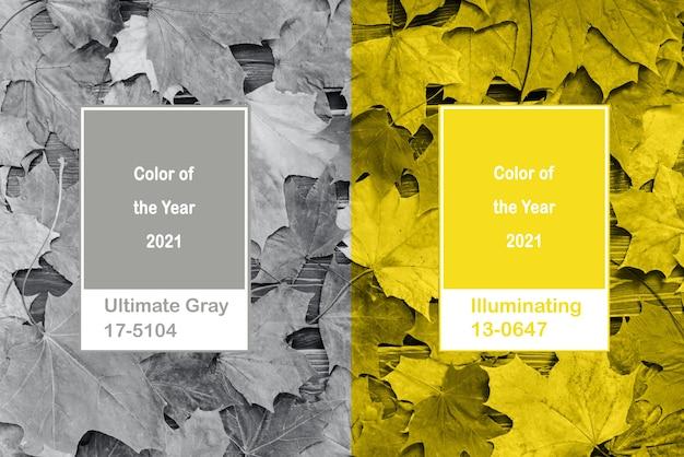 Collage illuminating e ultimate grey colors con foglie