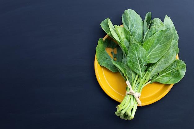 Foglie di cavolo verde con buchi, mangiate dai parassiti. verdura biologica