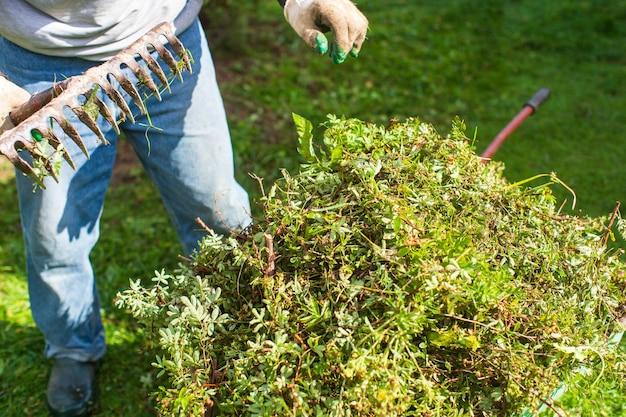 Raccolta dei rifiuti del giardino. strumenti da giardinaggio. concetto agricolo. stagione agricola