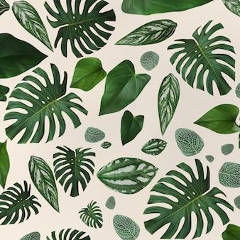 Modello delle foglie verdi della raccolta per il concetto della natura