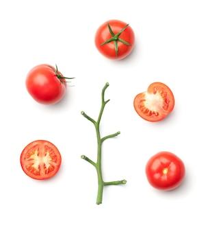 Raccolta di pomodori rossi isolati su bianco