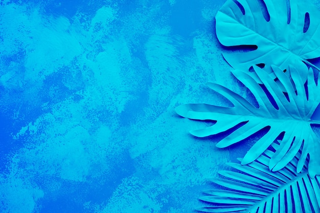 Raccolta di foglie tropicali, piante di fogliame su sfondo colorato pittura sfumata
