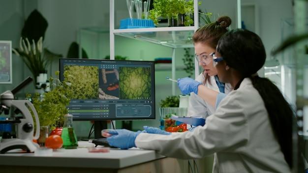Colleghi che controllano le competenze mediche sul computer alla ricerca di campioni di carne ogm