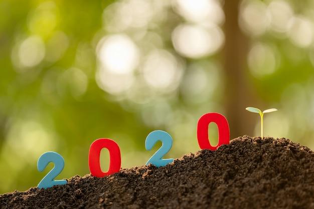 Colori il numero 2020 e il giovane germoglio verde dell'albero che cresce nel suolo nel fondo della sfuocatura del giardino