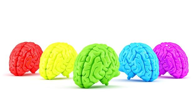 Cervelli umani colorati. concetto creativo. illustrazione 3d. isolato. contiene il tracciato di ritaglio