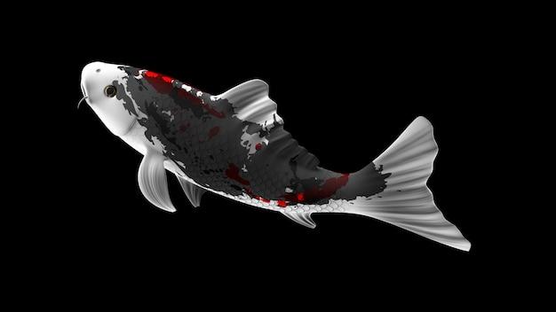 Pesce koi colorato rendering 3d con motivi di colore bianco e rosso nero e vista laterale