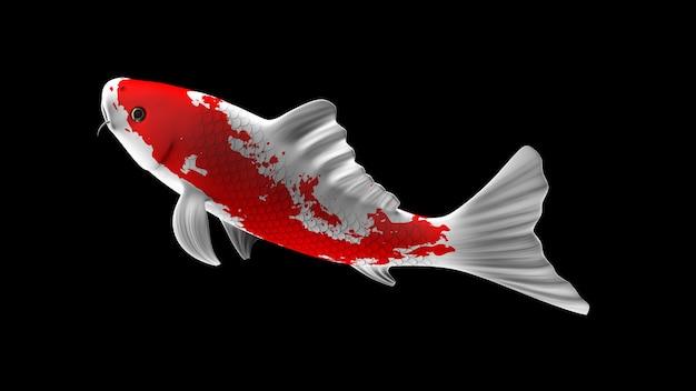 Pesce koi colorato rendering 3d con motivi di colore bianco e rosso e vista laterale