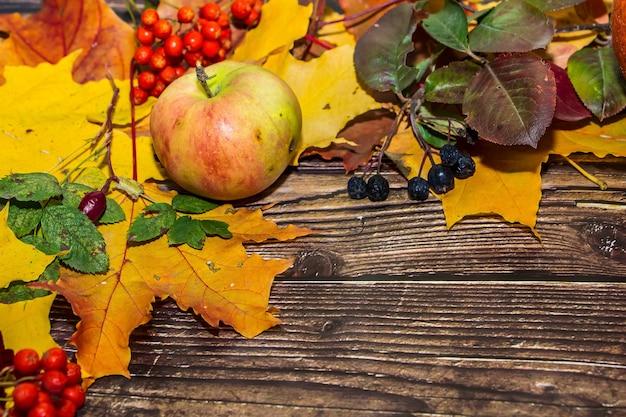 Colorata composizione autunnale di foglie gialle, mele, zucche su uno sfondo di legno marrone scuro.