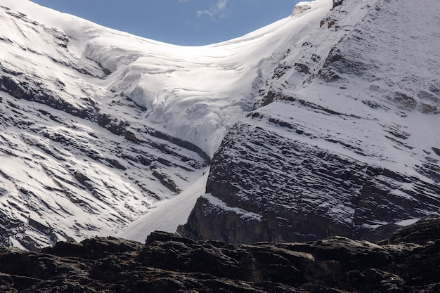 Colorato nella foresta di autunno e montagna di neve nella riserva naturale di yading