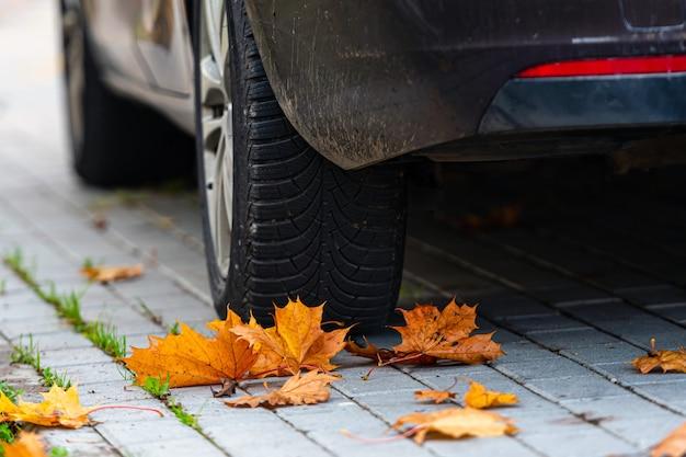 Foglie di autunno colorate sul marciapiede con ruota di automobile