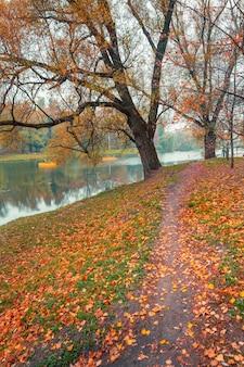 Parco autunnale colorato. alberi di autunno con le foglie gialle nel parco di autunno. belgorod. russia.