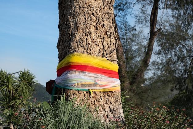Un panno colorato avvolto intorno a un grande albero con fedeli nel parco