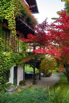 Cortile colorato con piante nella città di salzkammergut in austria