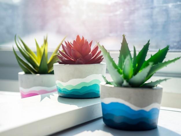 Vasi di cemento rotondi fai da te colorati con piante succulente verdi e rosse su uno scaffale di legno bianco sulla parete bianca vicino alla finestra di vetro. primo piano tre fioriere in cemento dipinte a colori unici e colorati.