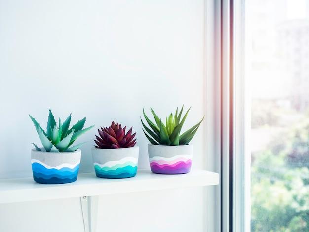 Vasi di cemento rotondi fai da te colorati con piante succulente verdi e rosse su uno scaffale di legno bianco sulla parete bianca vicino alla finestra di vetro con spazio per le copie. tre fioriere in cemento dipinte a colori unici.