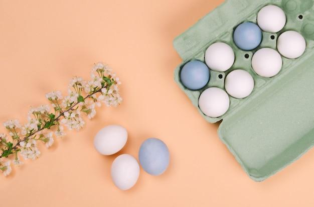 Uova di pasqua colorate e ramo con fiori di ciliegio