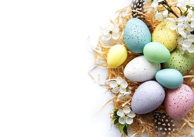 Uova di pasqua colorate con fiori di primavera sbocciano i fiori isolati su sfondo bianco. bordo colorato di festa dell'uovo.