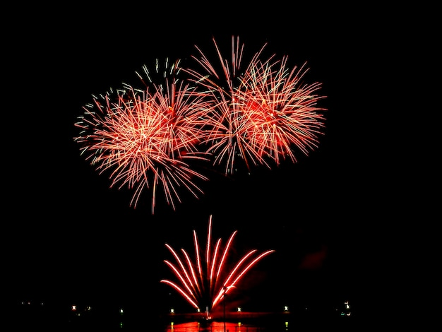 Fuochi d'artificio colorati nel cielo notturno