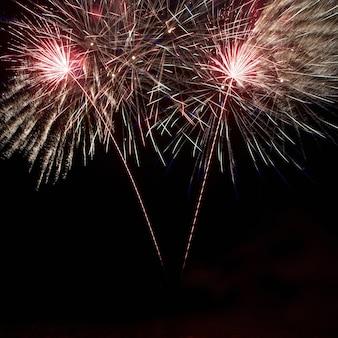 Fuochi d'artificio colorati sul cielo nero