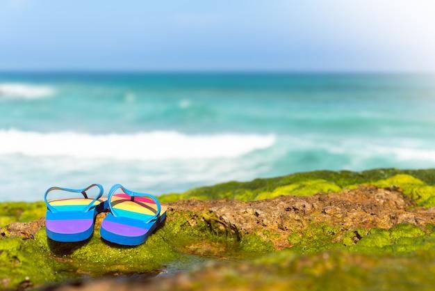 Infradito colorate (bandiera lgbt) su ãƒâƒã'â¢ãƒâ'ã'â€ãƒâ'ã'â‹ãƒâƒã'â¢ãƒâ'ã'â€ãƒâ'ã'â‹le alghe verdi delle spiagge rocciose della cantabria in spagna.