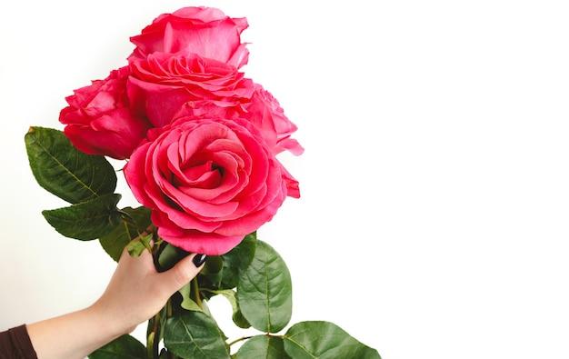 Colorato bouquet floreale di fiori rosa rose in mano femminile su sfondo bianco con spazio di copia