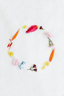 Cornice rotonda di petali freschi colorati su sfondo bianco