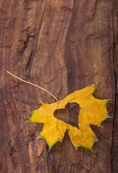 Cuore colorato fatto di foglie di autunno su uno sfondo di legno.