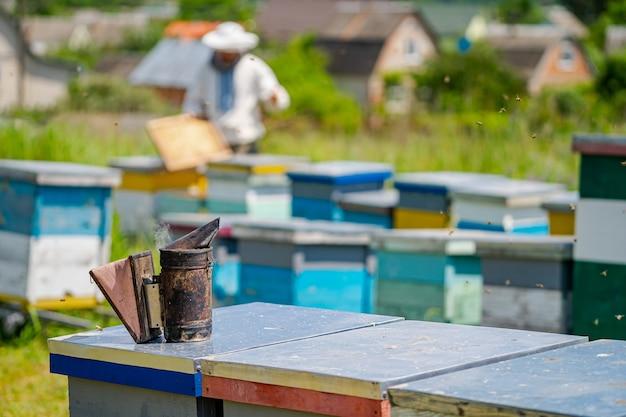 Alveari colorati di api su un prato in estate. alveari in un apiario con api che volano verso le tavole di atterraggio. apicoltura. fumatore di api sull'alveare.